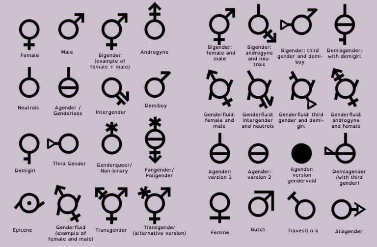 gender1-768x503